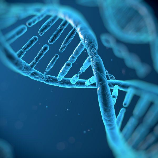 dna molecules realized worth neuroscience evolution employee engagement